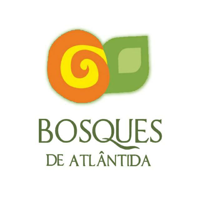 BOSQUES DE ATLANTIDA